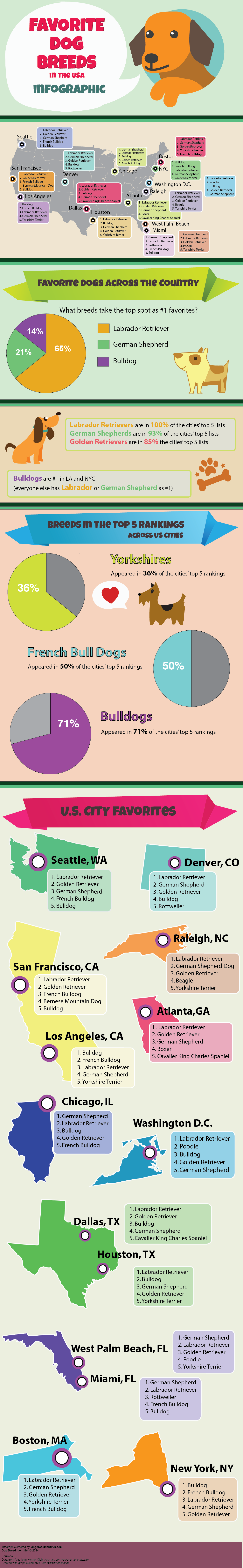Top Dog Breeds in the USA Infographic