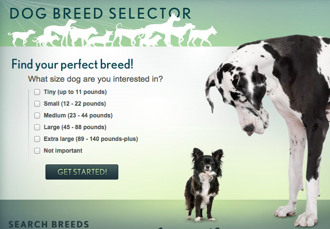 Dog breed quiz for me