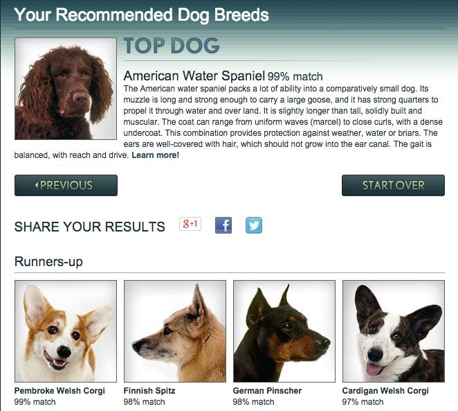 Dog Whisperer Breed Selector